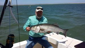 Click to view album: Monomoy Fishing Charters